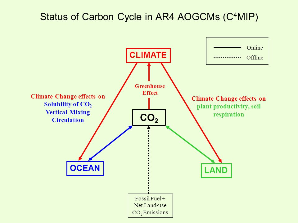 Status of Carbon Cycle in AR4 AOGCMs (C 4 MIP) Fossil Fuel + Net Land-use CO 2 Emissions Online Offline CLIMATE OCEAN LAND CO 2 Greenhouse Effect Clim