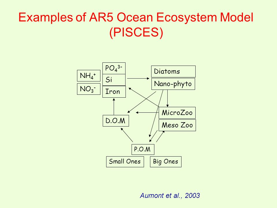 Examples of AR5 Ocean Ecosystem Model (PISCES) PO 4 3- Diatoms MicroZoo P.O.M D.O.M Si Iron Nano-phyto Meso Zoo NO 3 - NH 4 + Small OnesBig Ones Aumon