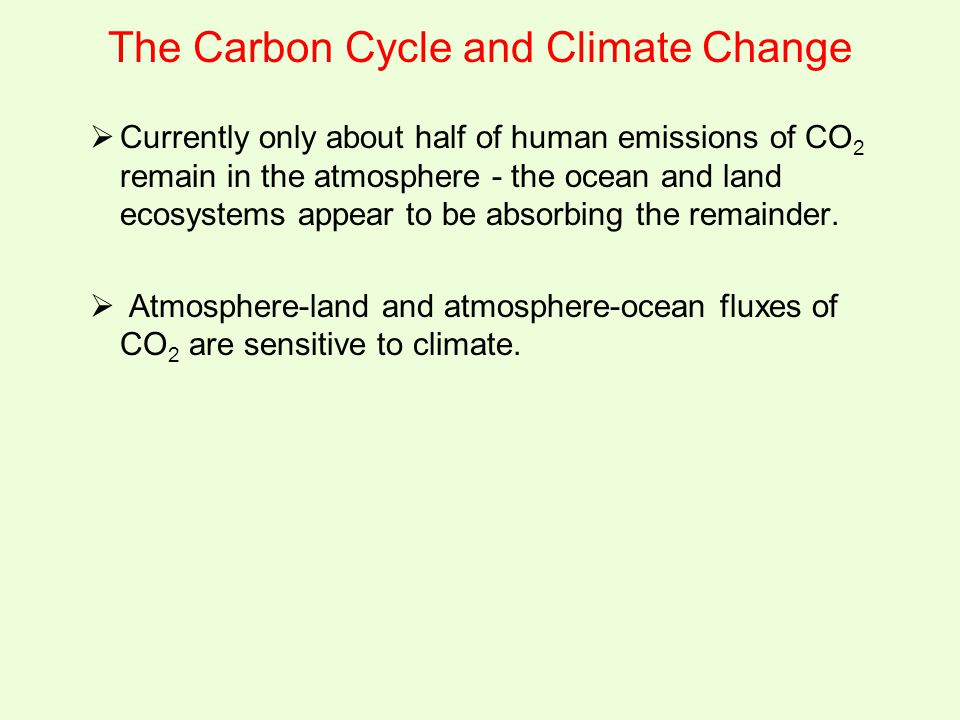 The Carbon Cycle and Climate Change  Currently only about half of human emissions of CO 2 remain in the atmosphere - the ocean and land ecosystems ap