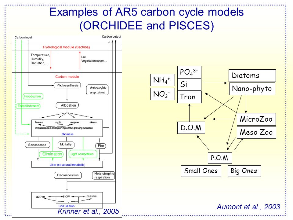 Examples of AR5 carbon cycle models (ORCHIDEE and PISCES) PO 4 3- Diatoms MicroZoo P.O.M D.O.M Si Iron Nano-phyto Meso Zoo NO 3 - NH 4 + Small OnesBig