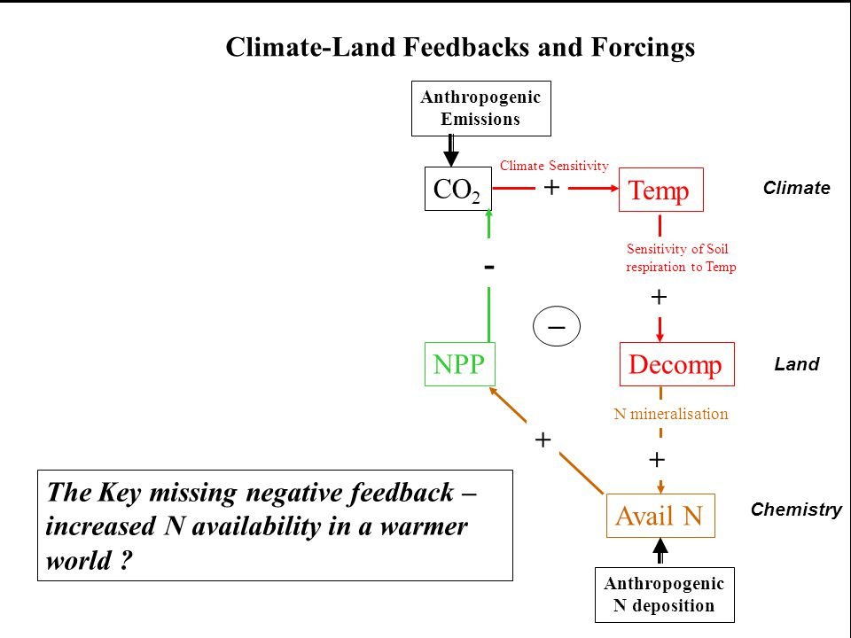 CO 2 Temp NPPDecomp + Climate Sensitivity Sensitivity of Soil respiration to Temp + - Anthropogenic Emissions Avail N N mineralisation + + Anthropogen