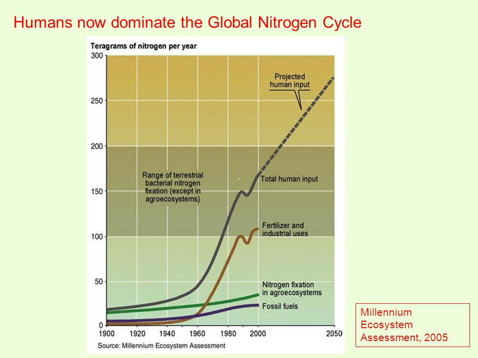 Humans now dominate the Global Nitrogen Cycle Millennium Ecosystem Assessment, 2005
