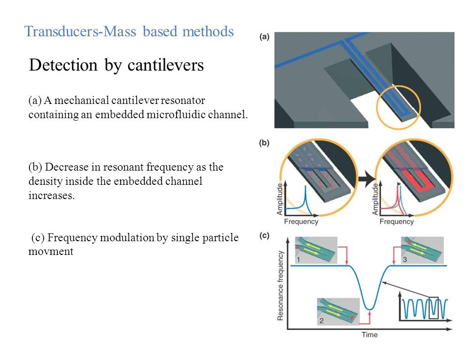 (b) Decrease in resonant frequency as the density inside the embedded channel increases. (c) Frequency modulation by single particle movment (a) A mec