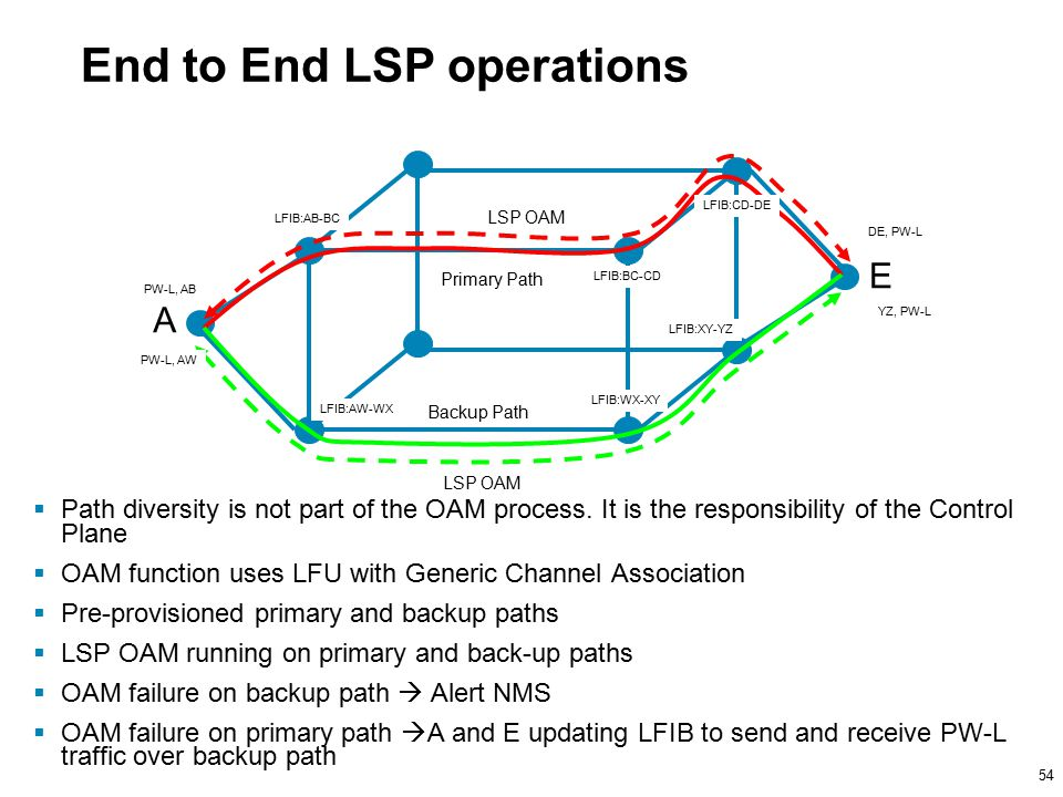 54 End to End LSP operations  Path diversity is not part of the OAM process.