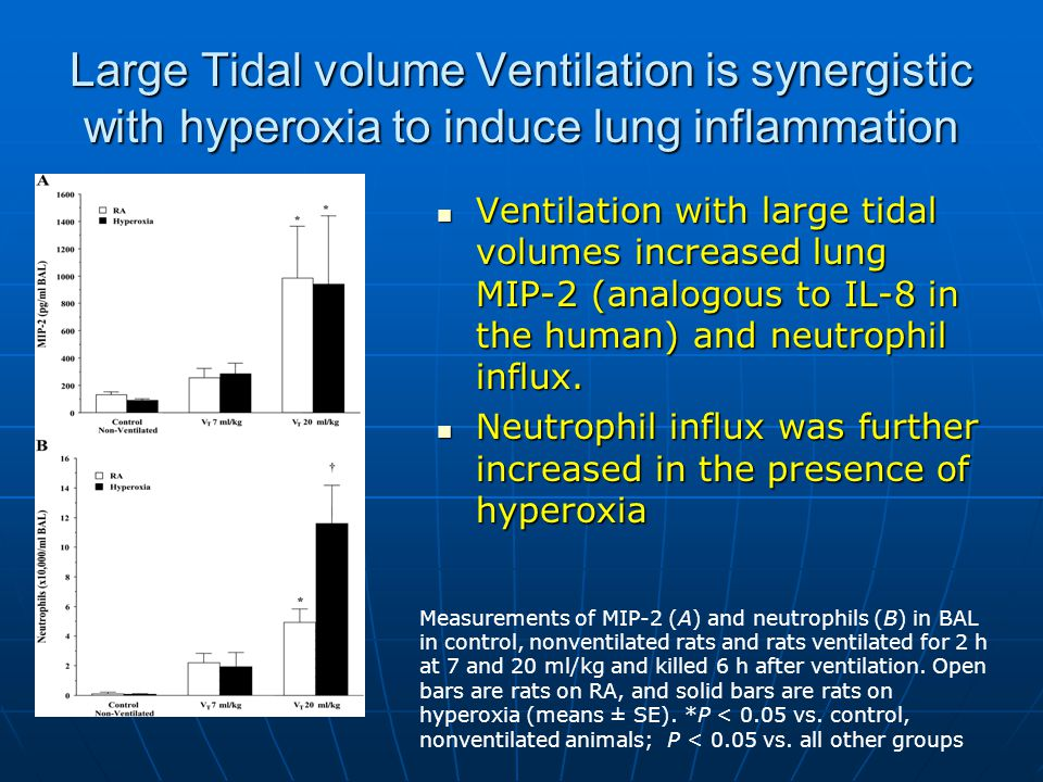 Large Tidal volume Ventilation is synergistic with hyperoxia to induce lung inflammation Ventilation with large tidal volumes increased lung MIP-2 (analogous to IL-8 in the human) and neutrophil influx.