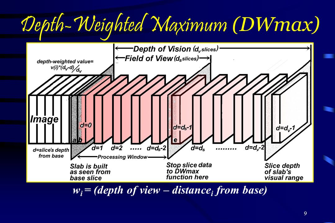 9 Depth-Weighted Maximum (DWmax) w i = (depth of view – distance i from base)