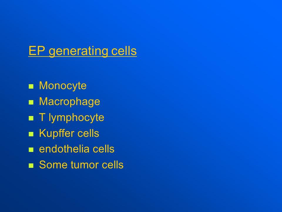 EP generating cells Monocyte Macrophage T lymphocyte Kupffer cells endothelia cells Some tumor cells