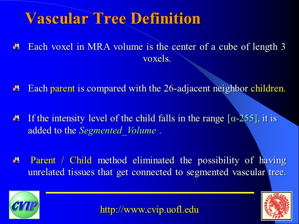 http://www.cvip.uofl.edu Vascular Tree Definition Each voxel in MRA volume is the center of a cube of length 3 voxels.