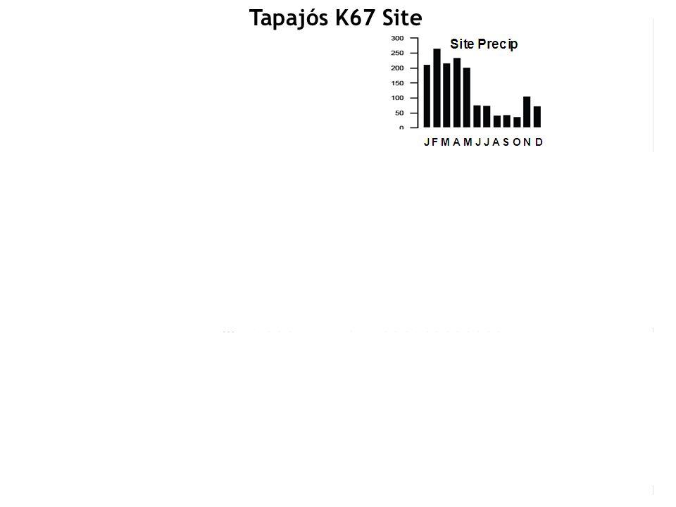 Tapajós K67 Site