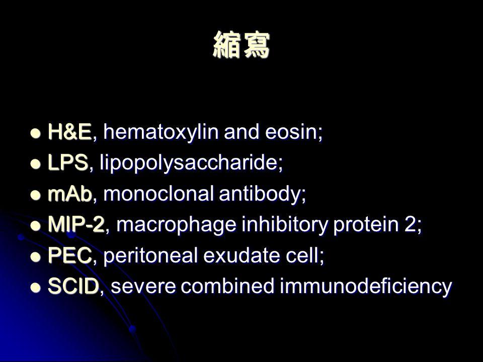 縮寫 H&E, hematoxylin and eosin; H&E, hematoxylin and eosin; LPS, lipopolysaccharide; LPS, lipopolysaccharide; mAb, monoclonal antibody; mAb, monoclonal