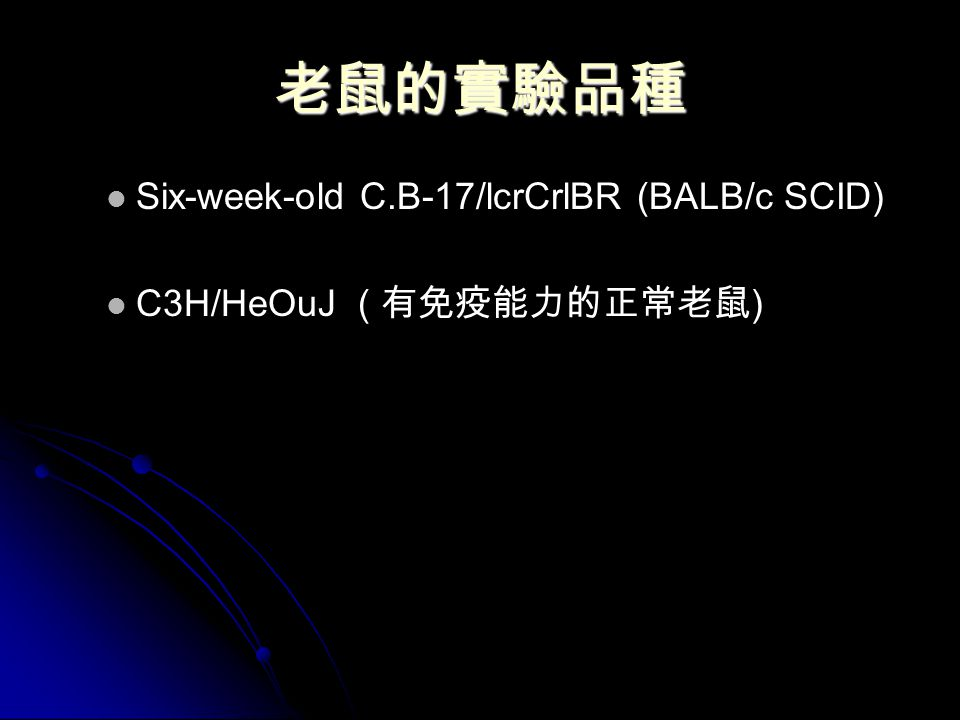 老鼠的實驗品種 Six-week-old C.B-17/lcrCrlBR (BALB/c SCID) C3H/HeOuJ ( 有免疫能力的正常老鼠 )