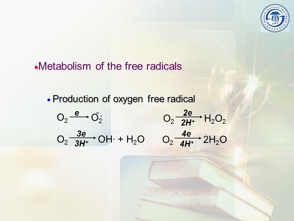 ■ ■ Metabolism of the free radicals O2O2 O2O2 ˉ · e O 2 OH· + H 2 O 3e 3H + 2e O 2 H 2 O 2 2H + 4e O 2 2H 2 O 4H + Production of oxygen free radical ● Production of oxygen free radical