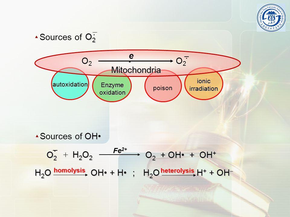 OH Sources of OH▲ Fe 2+ H 2 O 2 + H 2 O 2 O 2 + OH + OH + · O2O2O2O2 H 2 O OH + H ; H 2 O H + + OH ‒ heterolysis homolysis ▲ · O2O2O2O2  Sources of autoxidation Enzyme oxidation poison O2O2 e-e- Mitochondria O2O2 · ionic irradiation