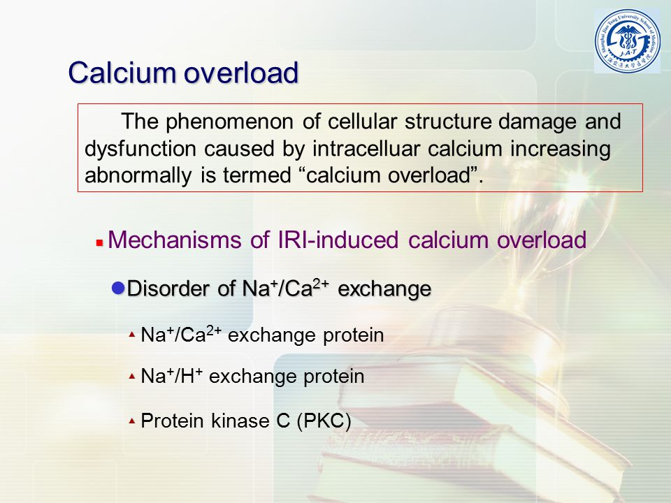 Calcium overload The phenomenon of cellular structure damage and dysfunction caused by intracelluar calcium increasing abnormally is termed calcium overload .