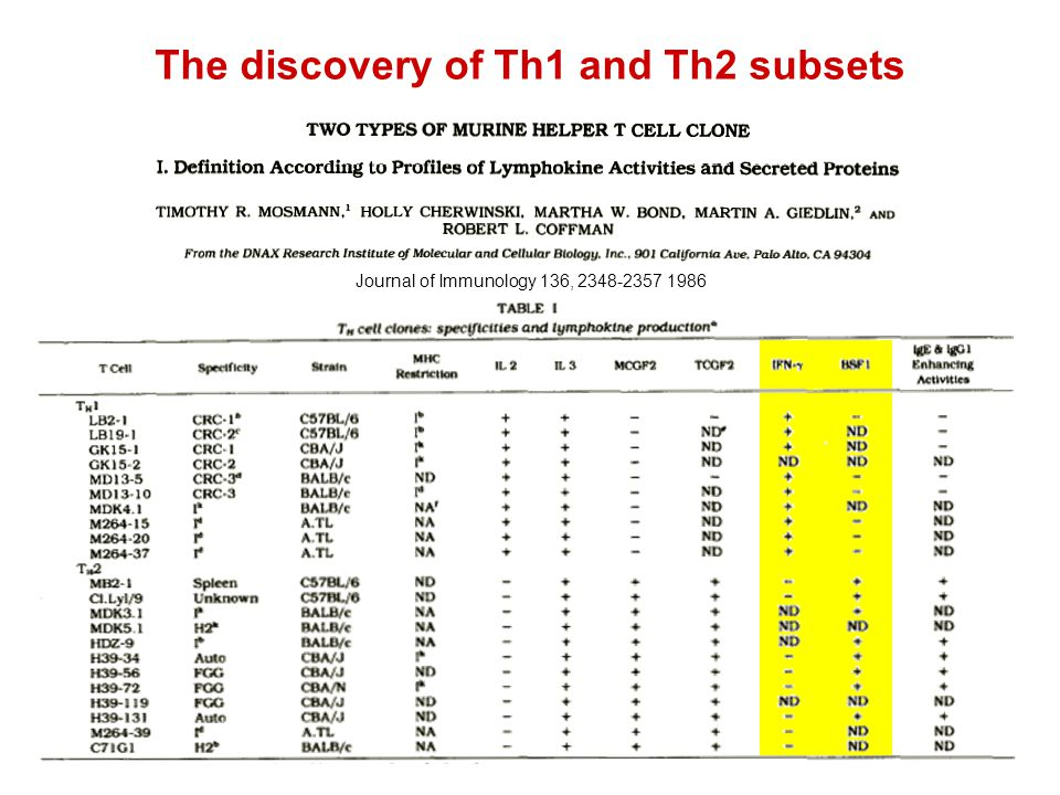 Journal of Immunology 136, 2348-2357 1986 The discovery of Th1 and Th2 subsets