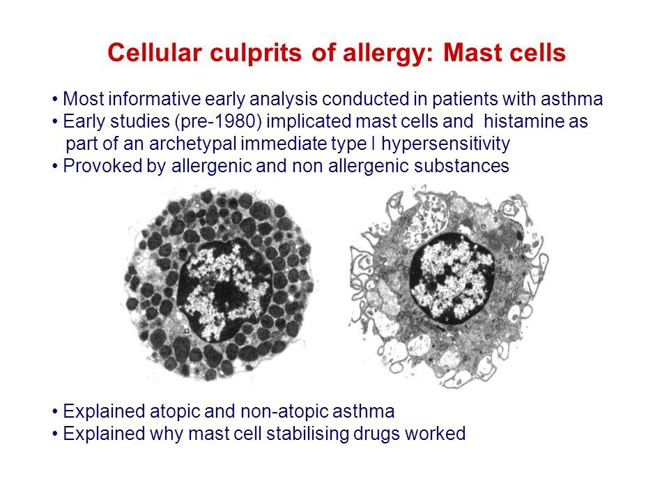 Cellular culprits of allergy: Mast cells?.