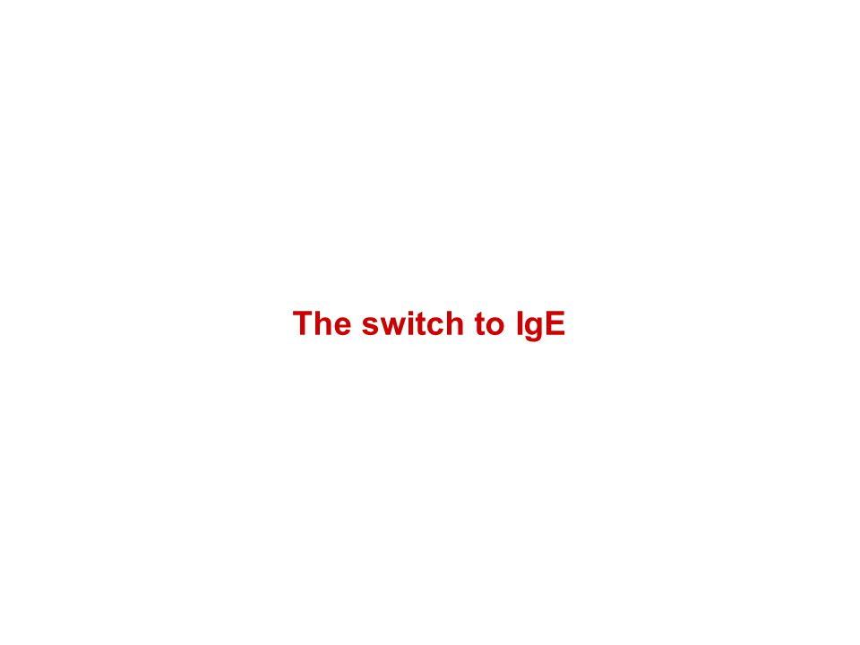 The switch to IgE