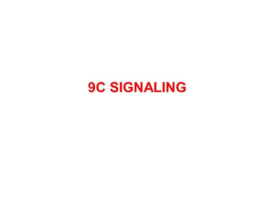 9C SIGNALING