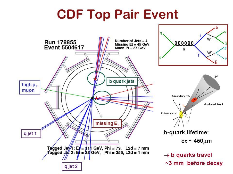 CDF Top Pair Event b quark jets missing E T q jet 1 q jet 2 high p T muon b-quark lifetime: c  ~ 450  m  b quarks travel ~3 mm before decay