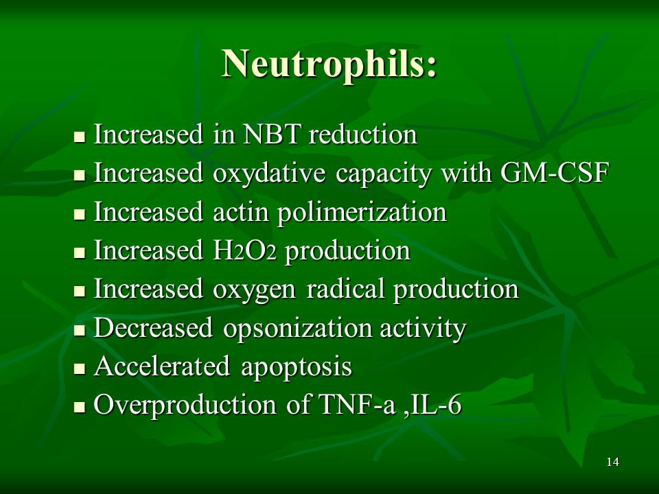 14 Neutrophils: Increased in NBT reduction Increased in NBT reduction Increased oxydative capacity with GM-CSF Increased oxydative capacity with GM-CSF Increased actin polimerization Increased actin polimerization Increased H 2 O 2 production Increased H 2 O 2 production Increased oxygen radical production Increased oxygen radical production Decreased opsonization activity Decreased opsonization activity Accelerated apoptosis Accelerated apoptosis Overproduction of TNF-a,IL-6 Overproduction of TNF-a,IL-6