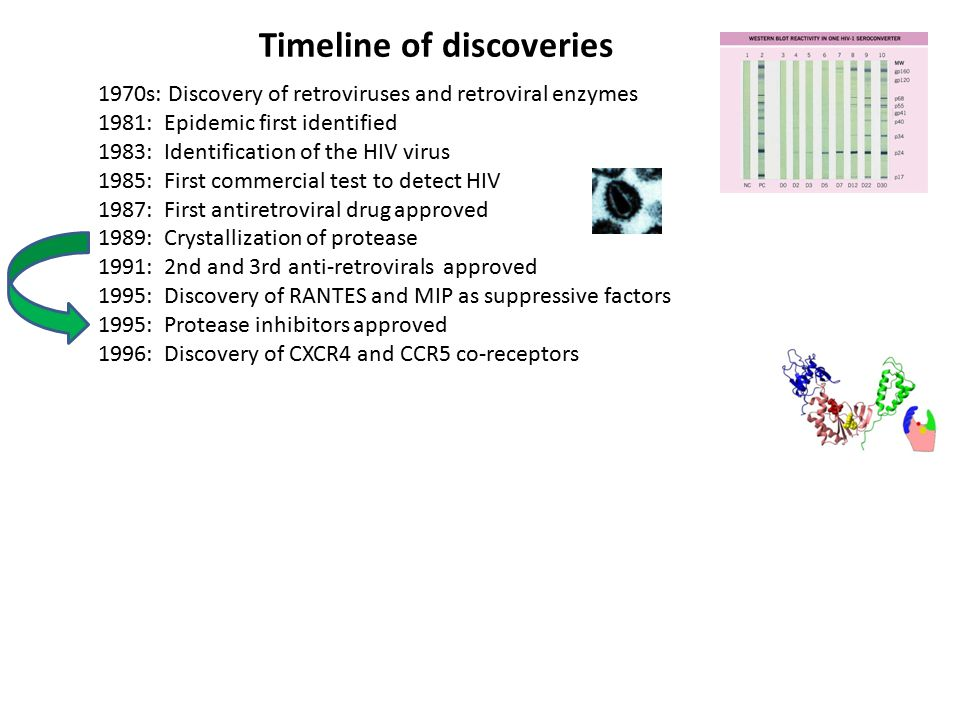 Timeline of discoveries 1970s: Discovery of retroviruses and retroviral enzymes 1981: Epidemic first identified 1983: Identification of the HIV virus