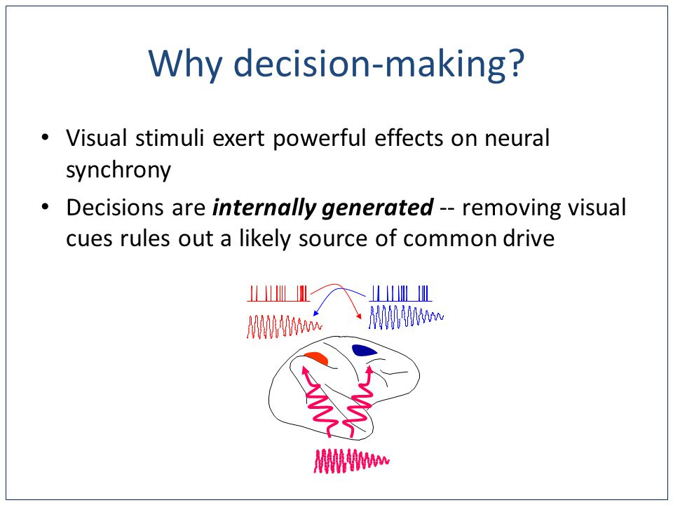 Visual stimuli exert powerful effects on neural synchrony Decisions are internally generated -- removing visual cues rules out a likely source of common drive Why decision-making