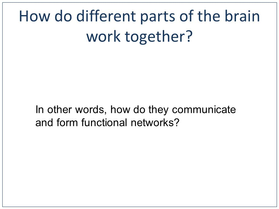 How do different parts of the brain work together.