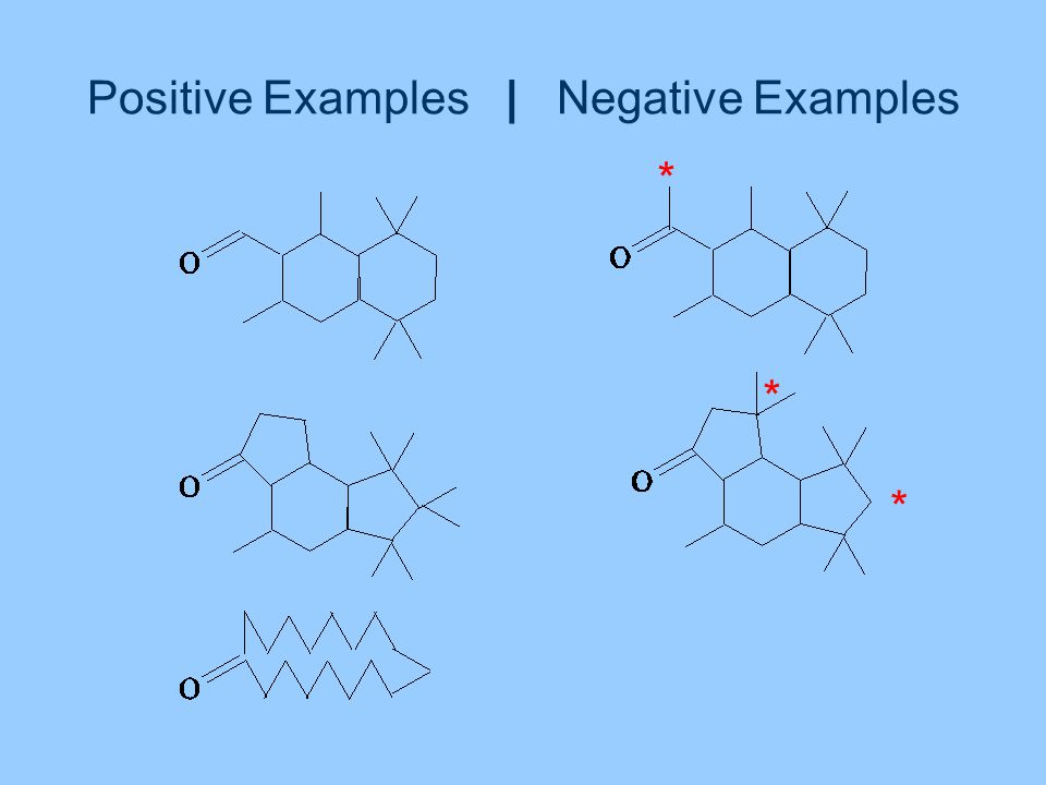 Positive Examples | Negative Examples * * *