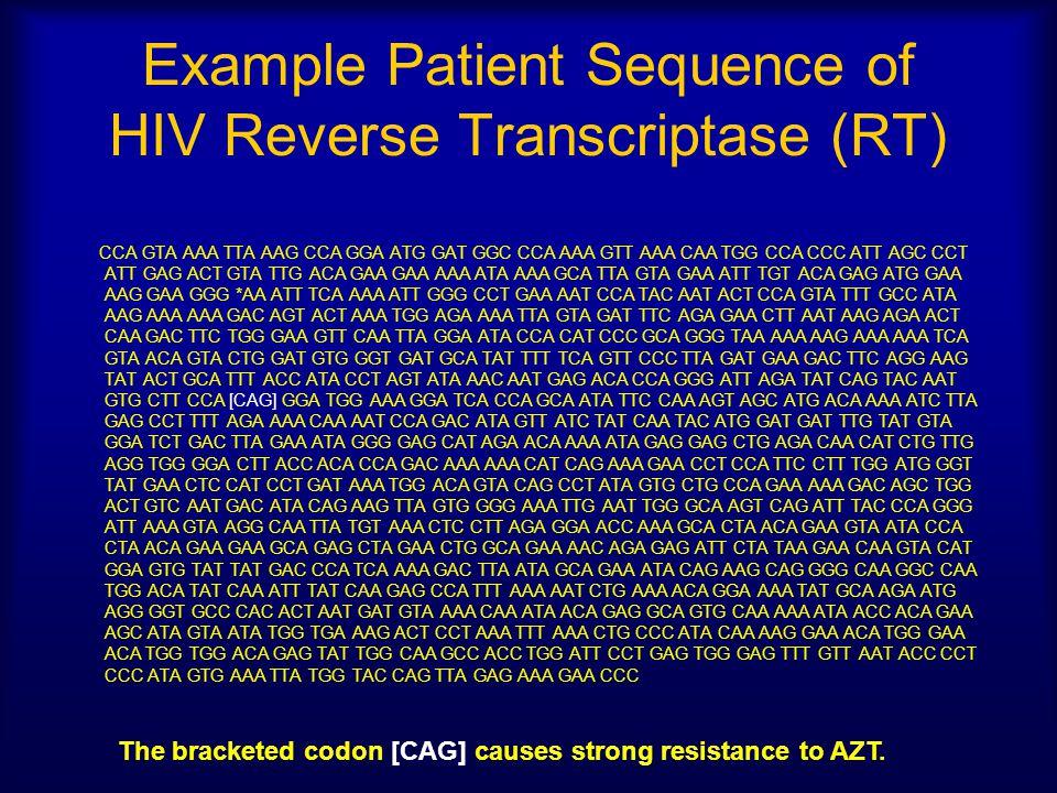 Example Patient Sequence of HIV Reverse Transcriptase (RT) CCA GTA AAA TTA AAG CCA GGA ATG GAT GGC CCA AAA GTT AAA CAA TGG CCA CCC ATT AGC CCT ATT GAG ACT GTA TTG ACA GAA GAA AAA ATA AAA GCA TTA GTA GAA ATT TGT ACA GAG ATG GAA AAG GAA GGG *AA ATT TCA AAA ATT GGG CCT GAA AAT CCA TAC AAT ACT CCA GTA TTT GCC ATA AAG AAA AAA GAC AGT ACT AAA TGG AGA AAA TTA GTA GAT TTC AGA GAA CTT AAT AAG AGA ACT CAA GAC TTC TGG GAA GTT CAA TTA GGA ATA CCA CAT CCC GCA GGG TAA AAA AAG AAA AAA TCA GTA ACA GTA CTG GAT GTG GGT GAT GCA TAT TTT TCA GTT CCC TTA GAT GAA GAC TTC AGG AAG TAT ACT GCA TTT ACC ATA CCT AGT ATA AAC AAT GAG ACA CCA GGG ATT AGA TAT CAG TAC AAT GTG CTT CCA [CAG] GGA TGG AAA GGA TCA CCA GCA ATA TTC CAA AGT AGC ATG ACA AAA ATC TTA GAG CCT TTT AGA AAA CAA AAT CCA GAC ATA GTT ATC TAT CAA TAC ATG GAT GAT TTG TAT GTA GGA TCT GAC TTA GAA ATA GGG GAG CAT AGA ACA AAA ATA GAG GAG CTG AGA CAA CAT CTG TTG AGG TGG GGA CTT ACC ACA CCA GAC AAA AAA CAT CAG AAA GAA CCT CCA TTC CTT TGG ATG GGT TAT GAA CTC CAT CCT GAT AAA TGG ACA GTA CAG CCT ATA GTG CTG CCA GAA AAA GAC AGC TGG ACT GTC AAT GAC ATA CAG AAG TTA GTG GGG AAA TTG AAT TGG GCA AGT CAG ATT TAC CCA GGG ATT AAA GTA AGG CAA TTA TGT AAA CTC CTT AGA GGA ACC AAA GCA CTA ACA GAA GTA ATA CCA CTA ACA GAA GAA GCA GAG CTA GAA CTG GCA GAA AAC AGA GAG ATT CTA TAA GAA CAA GTA CAT GGA GTG TAT TAT GAC CCA TCA AAA GAC TTA ATA GCA GAA ATA CAG AAG CAG GGG CAA GGC CAA TGG ACA TAT CAA ATT TAT CAA GAG CCA TTT AAA AAT CTG AAA ACA GGA AAA TAT GCA AGA ATG AGG GGT GCC CAC ACT AAT GAT GTA AAA CAA ATA ACA GAG GCA GTG CAA AAA ATA ACC ACA GAA AGC ATA GTA ATA TGG TGA AAG ACT CCT AAA TTT AAA CTG CCC ATA CAA AAG GAA ACA TGG GAA ACA TGG TGG ACA GAG TAT TGG CAA GCC ACC TGG ATT CCT GAG TGG GAG TTT GTT AAT ACC CCT CCC ATA GTG AAA TTA TGG TAC CAG TTA GAG AAA GAA CCC The bracketed codon [CAG] causes strong resistance to AZT.