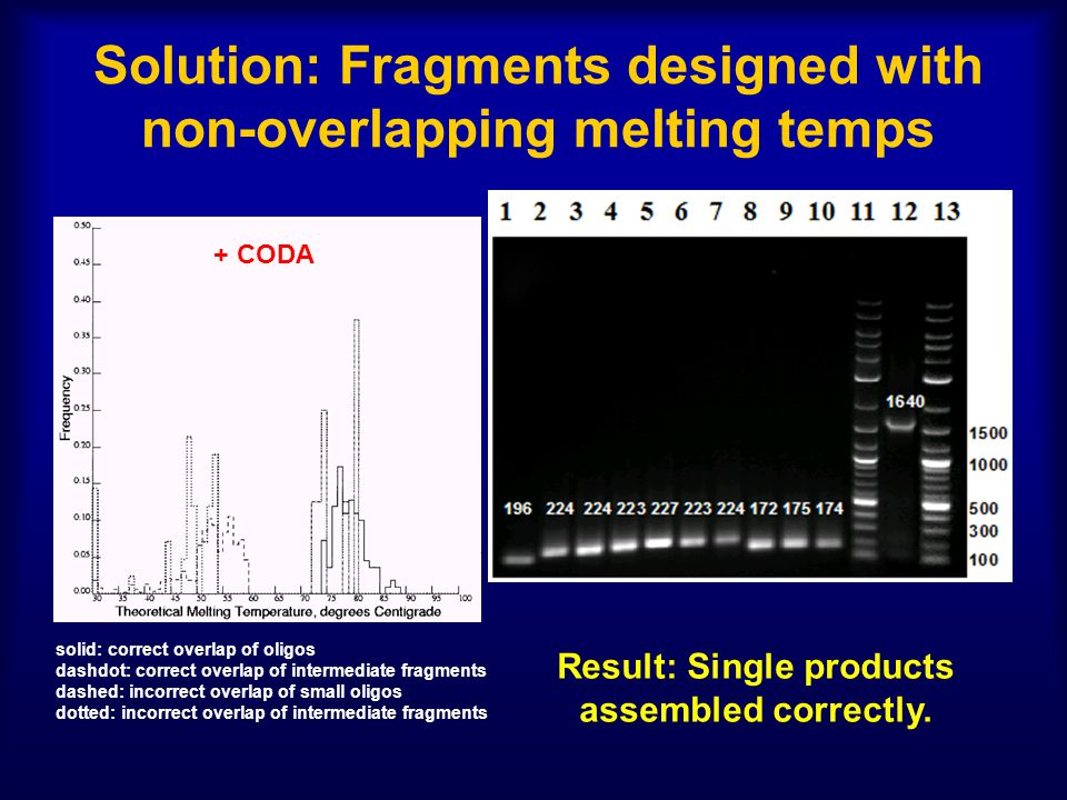 Solution: Fragments designed with non-overlapping melting temps + CODA solid: correct overlap of oligos dashdot: correct overlap of intermediate fragments dashed: incorrect overlap of small oligos dotted: incorrect overlap of intermediate fragments Result: Single products assembled correctly.