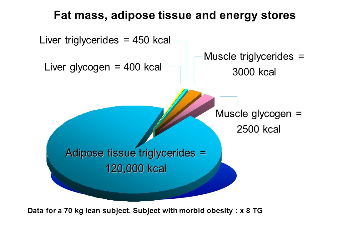 Fat mass, adipose tissue and energy stores Data for a 70 kg lean subject.