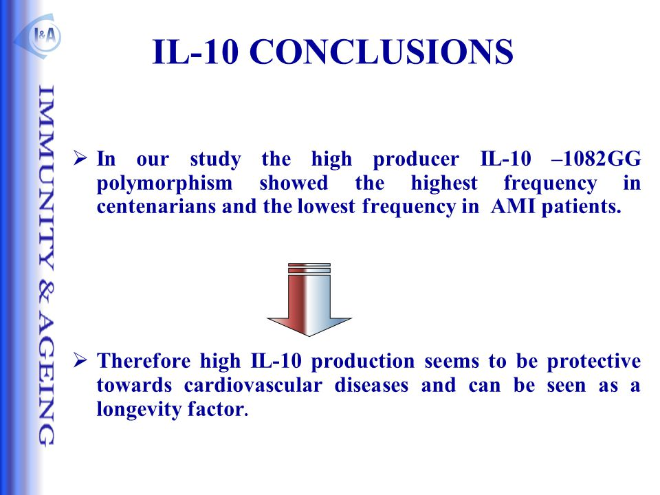 IL-10 CONCLUSIONS  In our study the high producer IL-10 –1082GG polymorphism showed the highest frequency in centenarians and the lowest frequency in