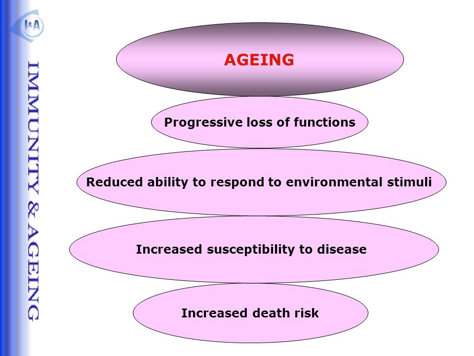AGEING Progressive loss of functions Increased death risk Reduced ability to respond to environmental stimuli Increased susceptibility to disease