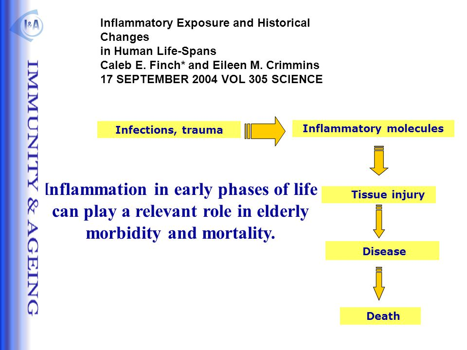 Inflammation in early phases of life can play a relevant role in elderly morbidity and mortality. Inflammatory molecules Infections, trauma Tissue inj