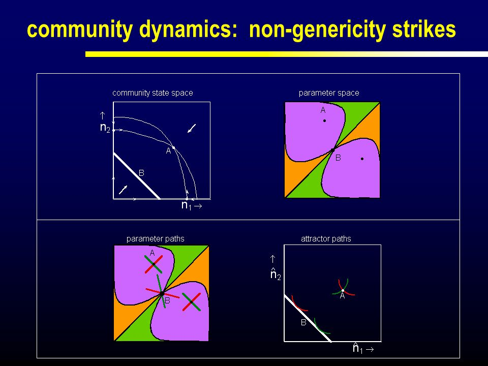 community dynamics: non-genericity strikes