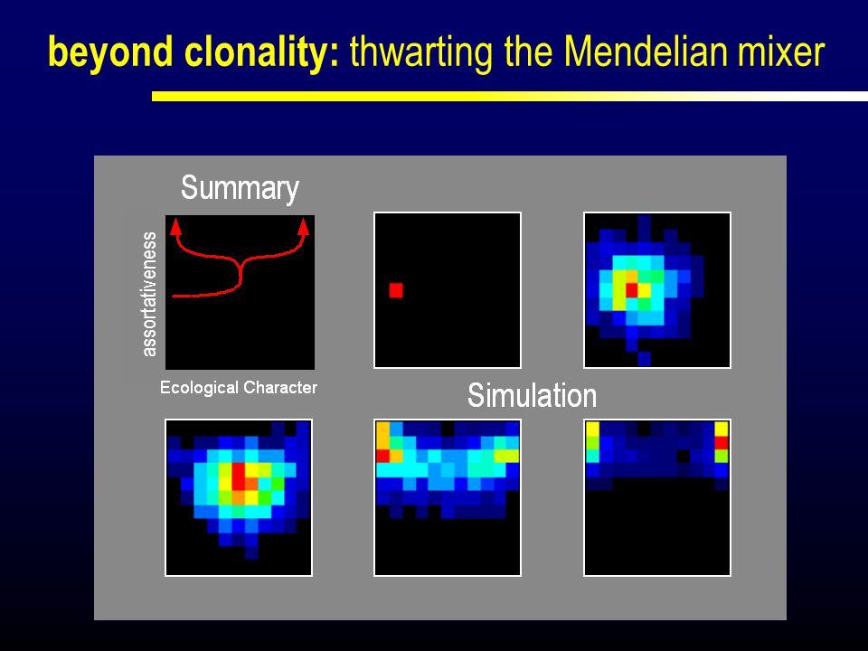 beyond clonality: thwarting the Mendelian mixer assortativeness