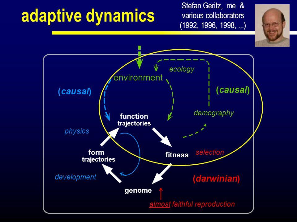 (pheno) type morph strategy trait vector ( trait value) point (in trait space) terminology corresponding terms: population genetics: evolutionary ecology: (meso-evolutionary statics) adaptive dynamics: (meso-evolutionary dynamics)