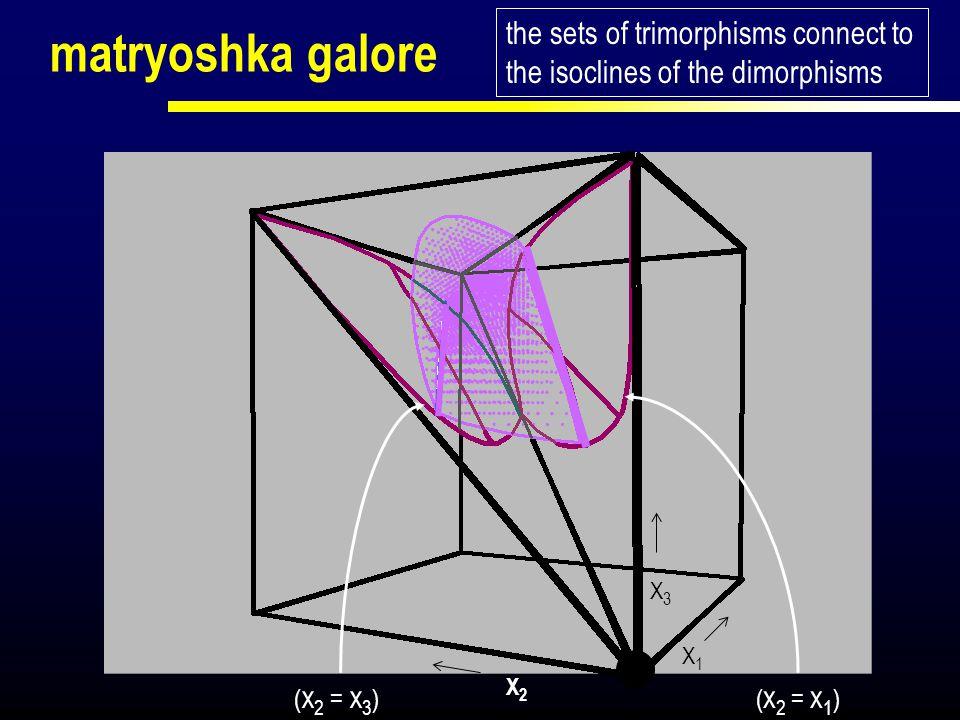 matryoshka galore the sets of trimorphisms connect to the isoclines of the dimorphisms X1X1 X2X2 X3X3 ( x 2 = x 3 )( x 2 = x 1 )