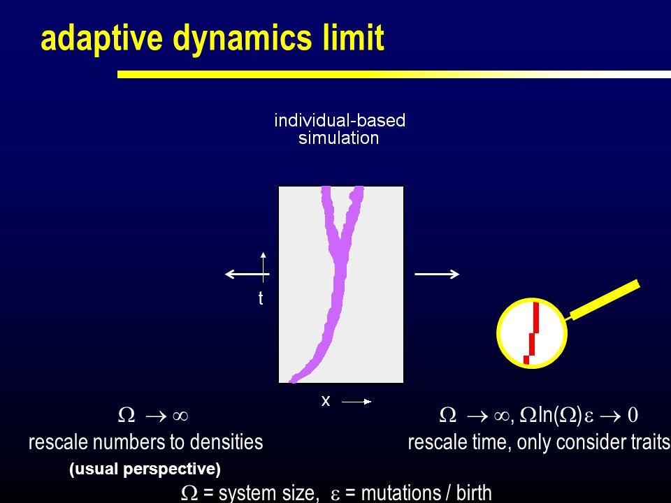 from individual dynamics through community dynamics to adaptive dynamics (AD)