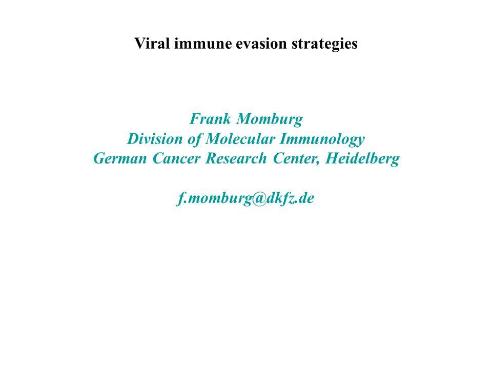 Viral immune evasion strategies Frank Momburg Division of Molecular Immunology German Cancer Research Center, Heidelberg f.momburg@dkfz.de