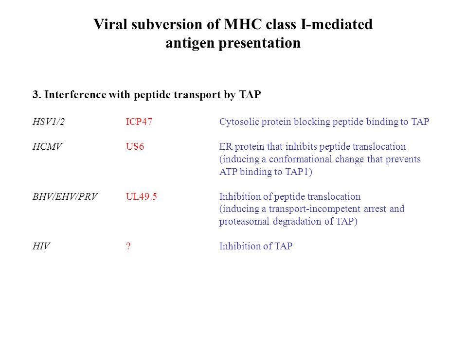 Viral subversion of MHC class I-mediated antigen presentation 3.