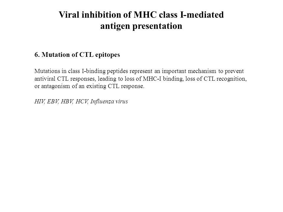 Viral inhibition of MHC class I-mediated antigen presentation 6.