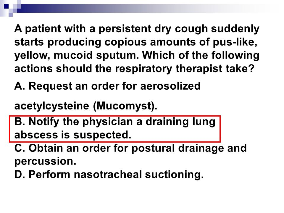 A patient with a persistent dry cough suddenly starts producing copious amounts of pus-like, yellow, mucoid sputum.