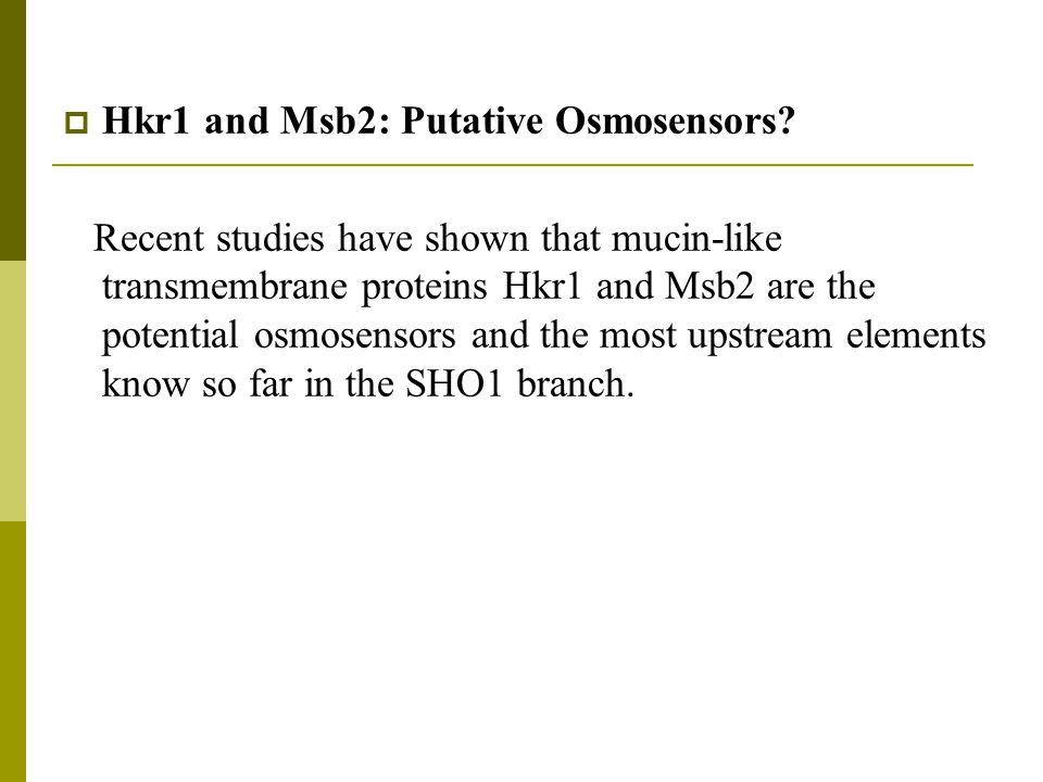  Hkr1 and Msb2: Putative Osmosensors.