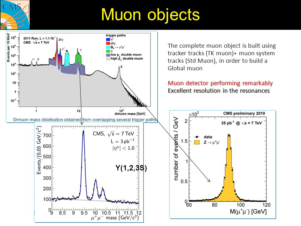The complete muon object is built using tracker tracks (TK muon)+ muon system tracks (Std Muon), in order to build a Global muon Muon detector perform
