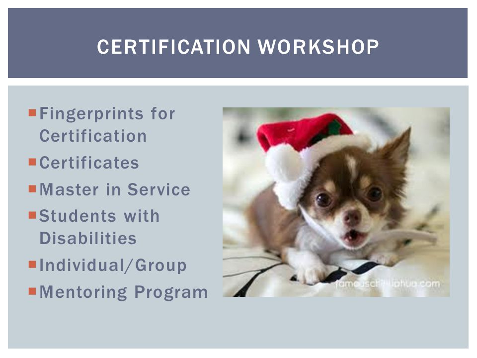  Fingerprints for Certification  Certificates  Master in Service  Students with Disabilities  Individual/Group  Mentoring Program CERTIFICATION WORKSHOP