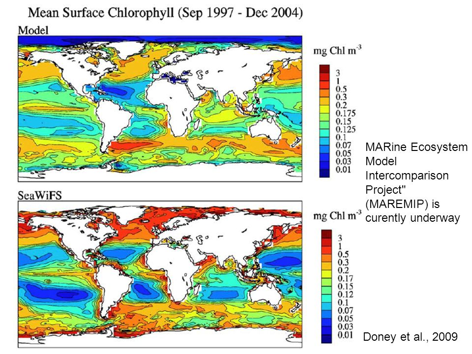 MARine Ecosystem Model Intercomparison Project (MAREMIP) is curently underway Doney et al., 2009