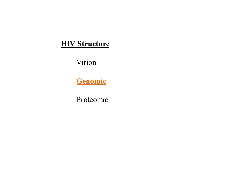 HIV Structure Virion Genomic Proteomic