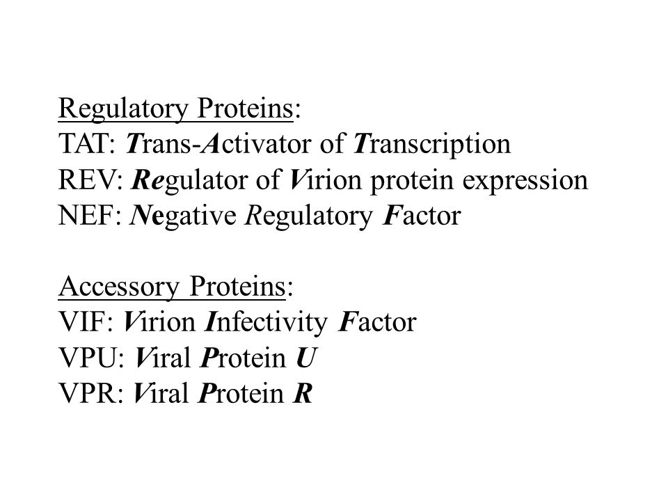 Regulatory Proteins: TAT: Trans-Activator of Transcription REV: Regulator of Virion protein expression NEF: Negative Regulatory Factor Accessory Prote