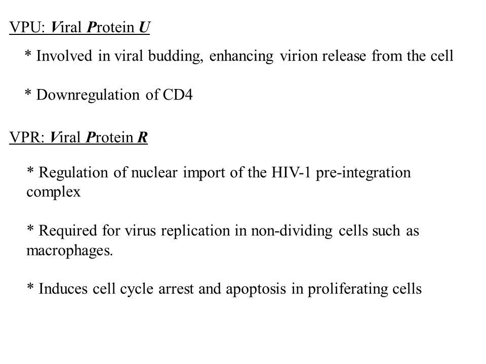 VPU: Viral Protein U * Involved in viral budding, enhancing virion release from the cell * Downregulation of CD4 VPR: Viral Protein R * Regulation of